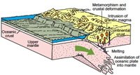 Subduction of an oceanic plate (Pacific plate) during convergence with a continental plate (North American plate)