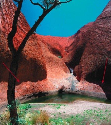 Uluru fig2