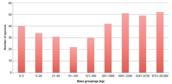 Determining Average Dinosaur Size Using the Most Recent Comprehen ...