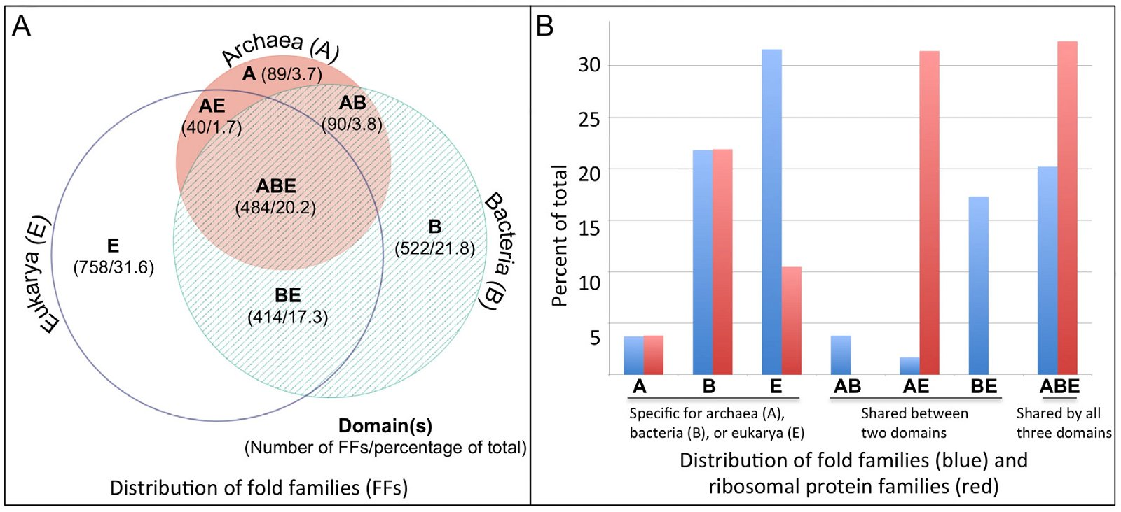 Information processing differences between archaea and eukarya a a venn diagram of protein ffs in the three domains of life adapted from fig 1a of nasir kim and gaetano anolles 2014 ccuart Images