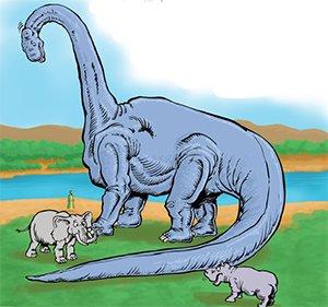 Dinosaur Comparison
