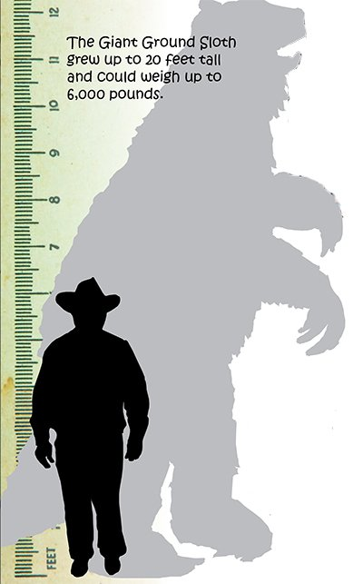 Giant Ground Sloth Size