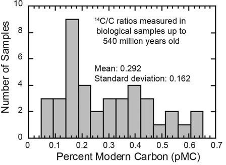What factor reduces the accuracy of radiocarbon dating
