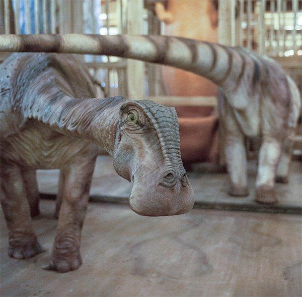 Rebbichisaur