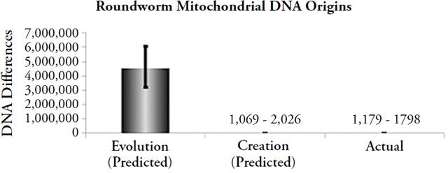 Roundworm Mitochondrial DNA Origins