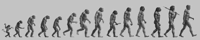 """""""The Road to Homo sapiens"""""""