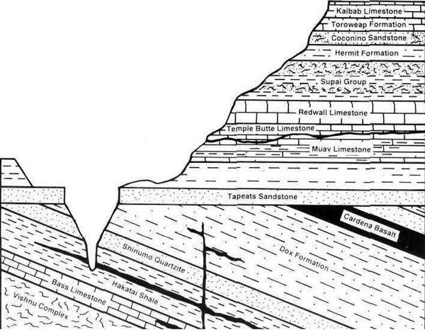 CrossSection the case of the 'missing' geologic time answers in genesis Sedimentary Rock Layers Diagram at gsmx.co