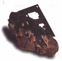 Clock fossilized in rock