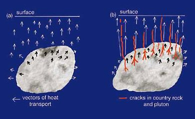 Diagrams of plutons cooling by conduction and convection