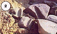 Close-up of the sandstone fragments