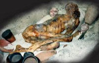 A desiccated mummy