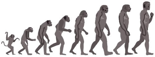 Ape-to-Man Evolution