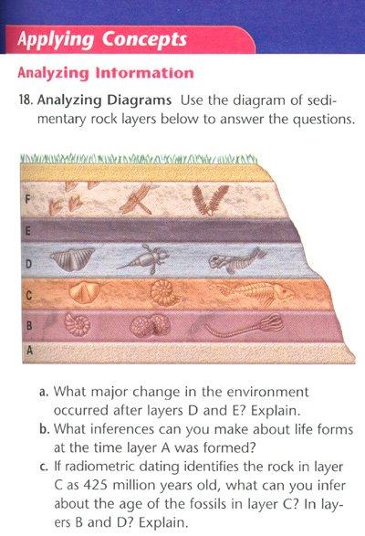 Analyzing Diagram