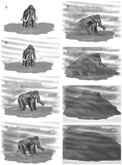 Extinction Of The Woolly Mammoth Answers In Genesis
