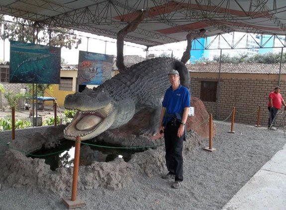 Museum Model of Crocodile