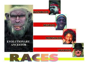 Are There Really Different Races?  Answers in Genesis
