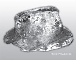 Fossilized Hat