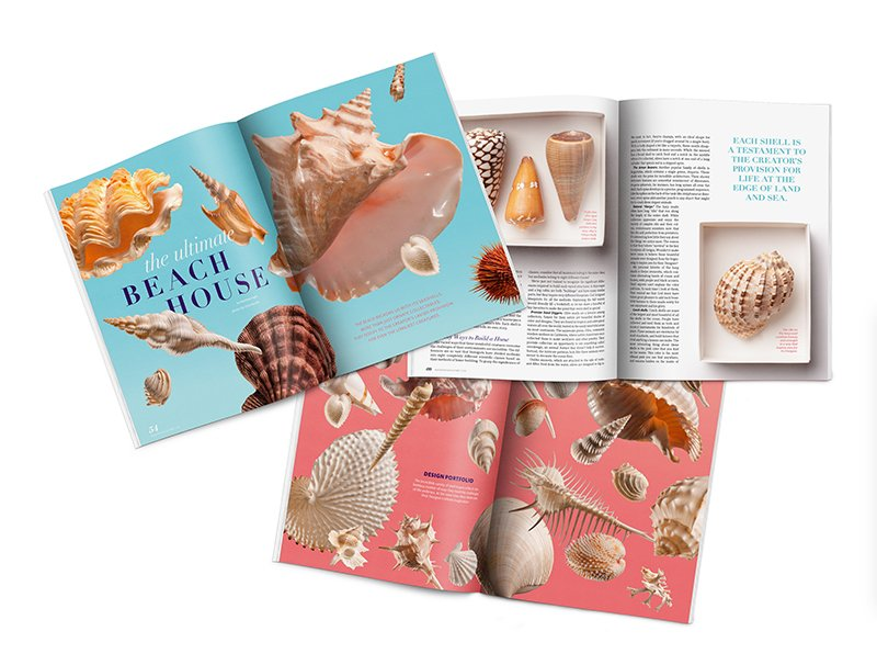 Photo Features of the Answers Magazine Shells Article