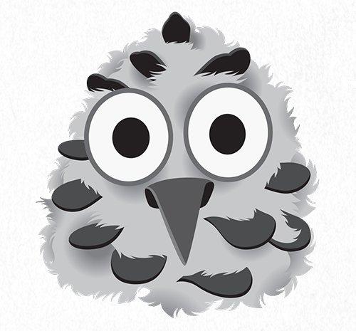 Baby Snowy Owl