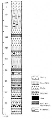 Stratigraphic Sequence in Oakleigh Coal Mine