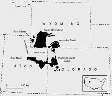 MAP, figure 1