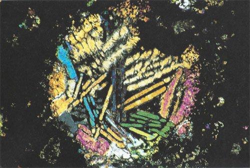 Polysomatic Barred Olivine Chondrule
