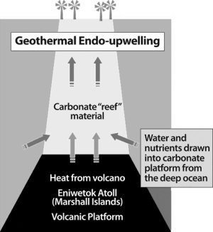 Geothermal Endo-upwelling