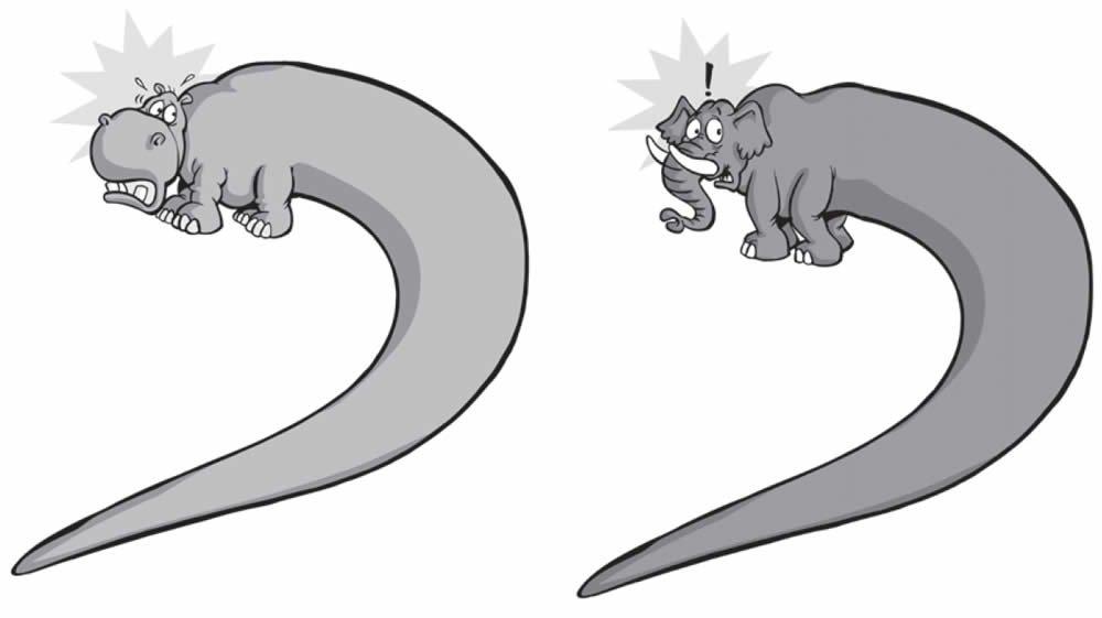 Qu realmente sucedi a los dinosaurios  Respuestas en Gnesis