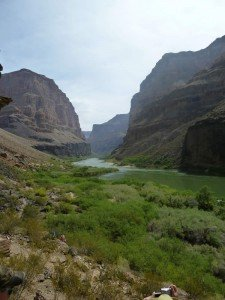 The winding Colorado River