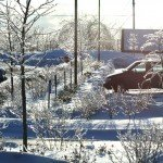 Ice-storm-w-Dave-B-pm-2-15-.jpg