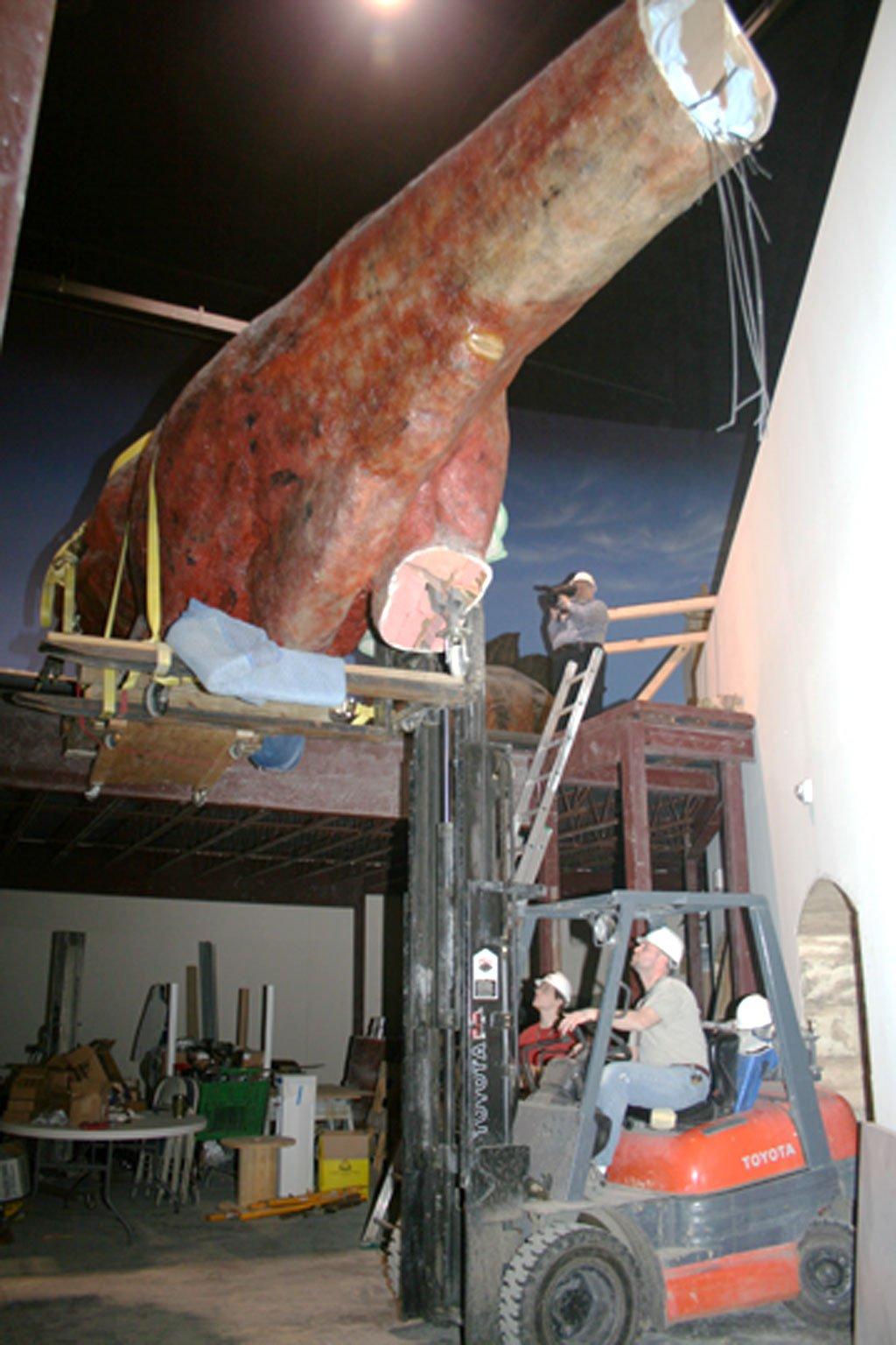 Lifting-Trex-2-22-07-027.jpg