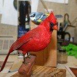 finished-cardinal-2-15-07-0.jpg