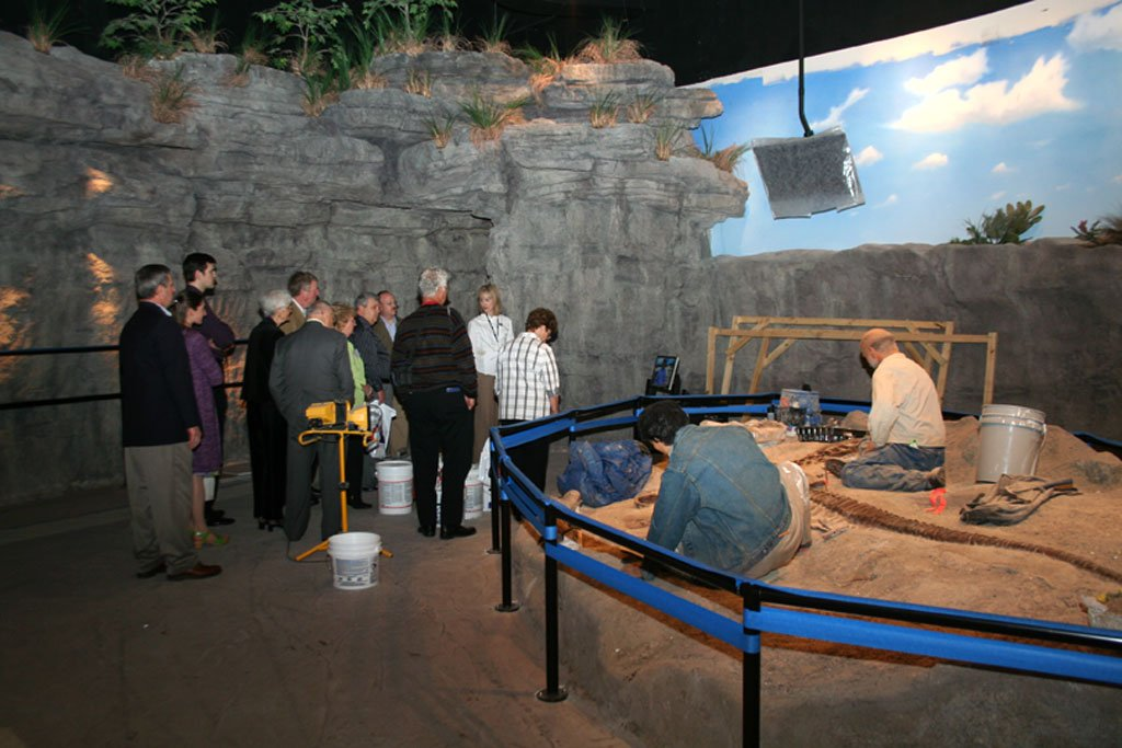 Creation Museum Construction