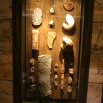 fossils-Palm-plza-4-22-.jpg