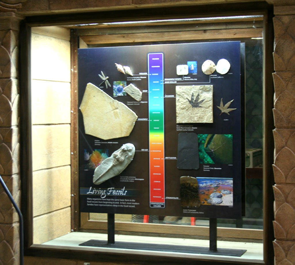 Displays in Mail Hall of Creation Museum