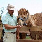 petting-zoo-update-6-18-08-105.jpg