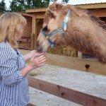 petting-zoo-update-6-18-08-147.jpg