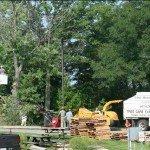 tree-cutting-n-more-9-3-08-012.jpg