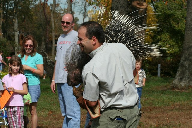 dan-breeding-porcupine-10-13-08-286.jpg
