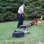 jack-suitcase-bomb-search-1-10-1-08-003.jpg