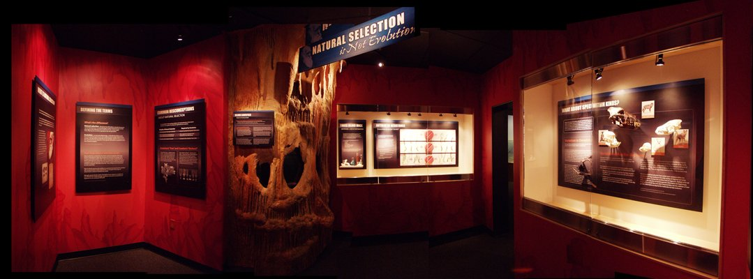 New Exhibit