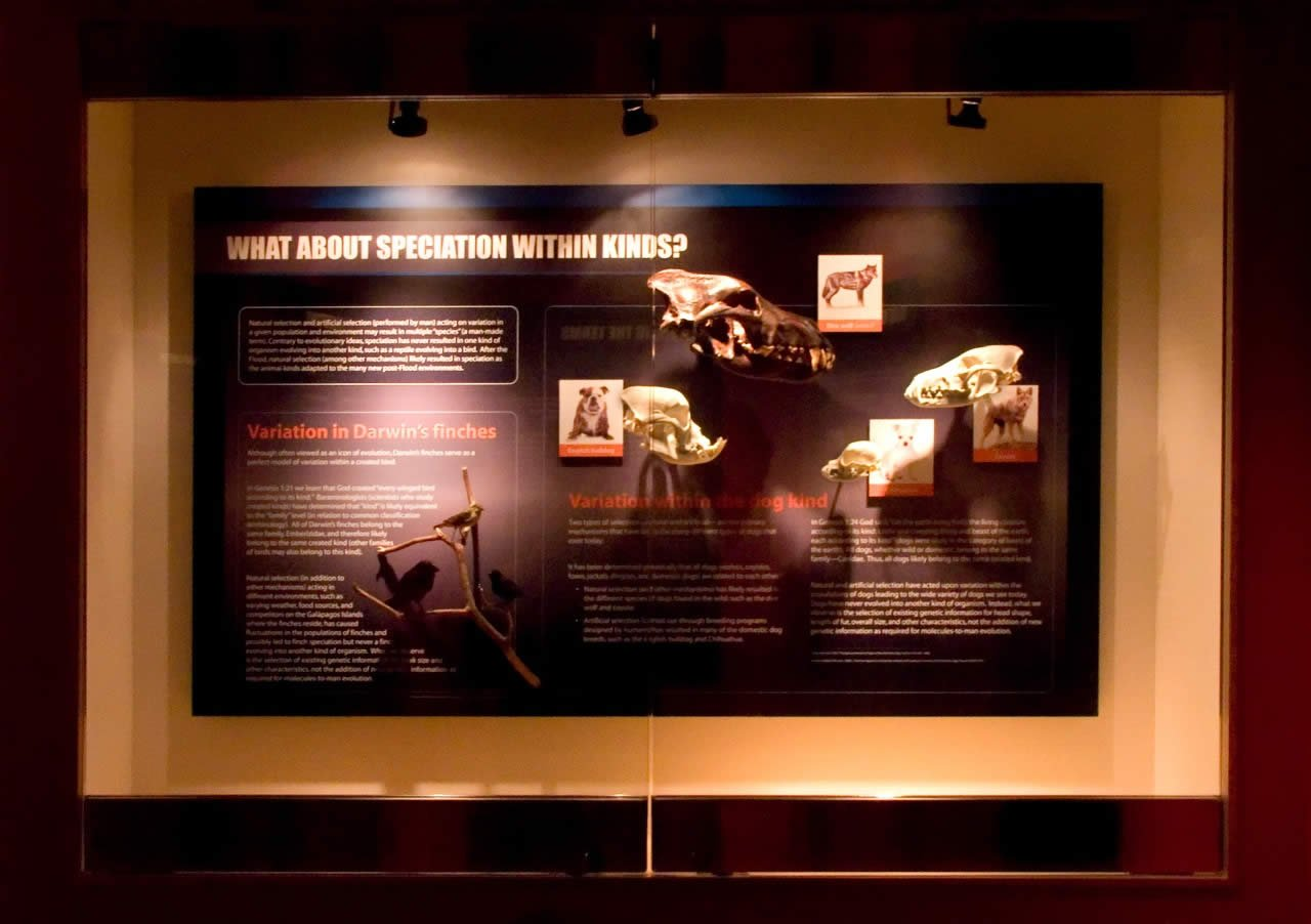 Dr Gary Parker Returns To The Creation Museum Answers