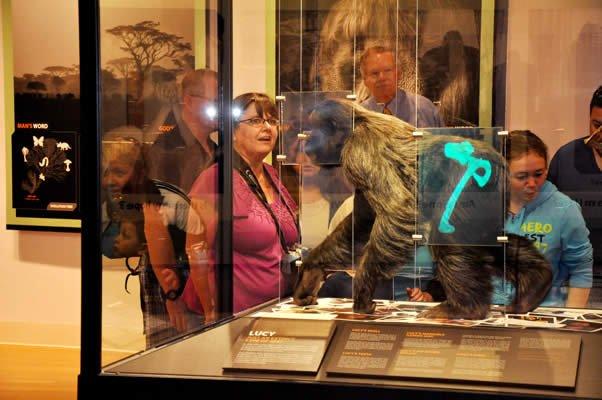 Lucy Exhibit