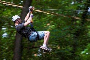 Zipping through the trees