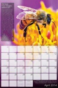 creation-calendar-2014-3