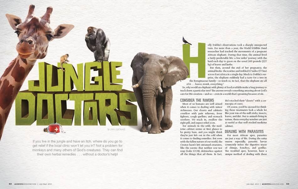 jungle-doctors