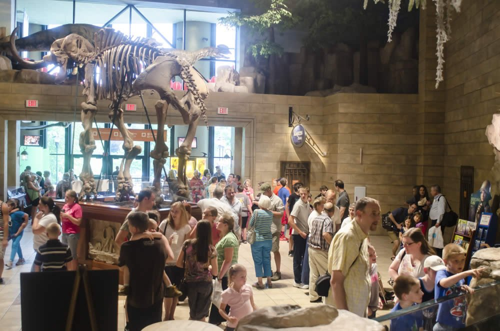 Creation Museum Guests