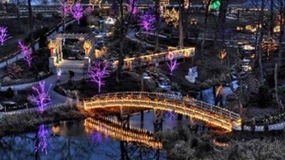 Christmas Town Garden of Llights