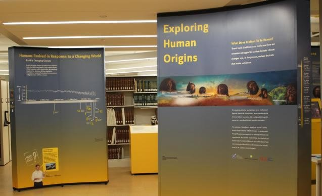 Exploring Human Origins
