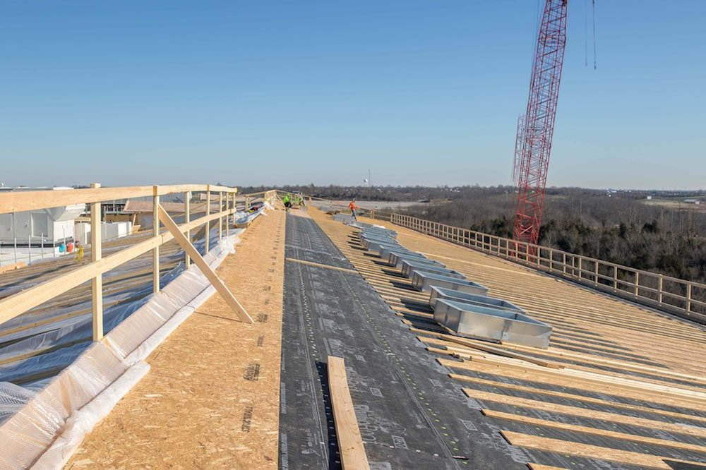 Ark Roof Deck View